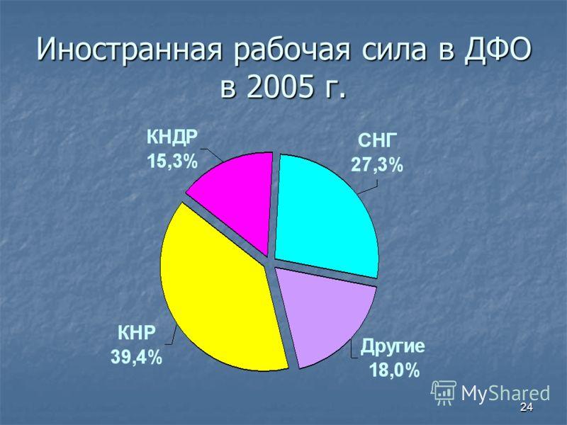 24 Иностранная рабочая сила в ДФО в 2005 г.