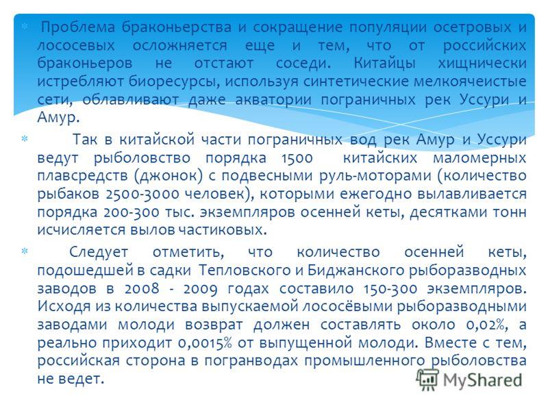Проблема браконьерства и сокращение популяции осетровых и лососевых осложняется еще и тем, что от российских браконьеров не отстают соседи. Китайцы хищнически истребляют биоресурсы, используя синтетические мелкоячеистые сети, облавливают даже акватор