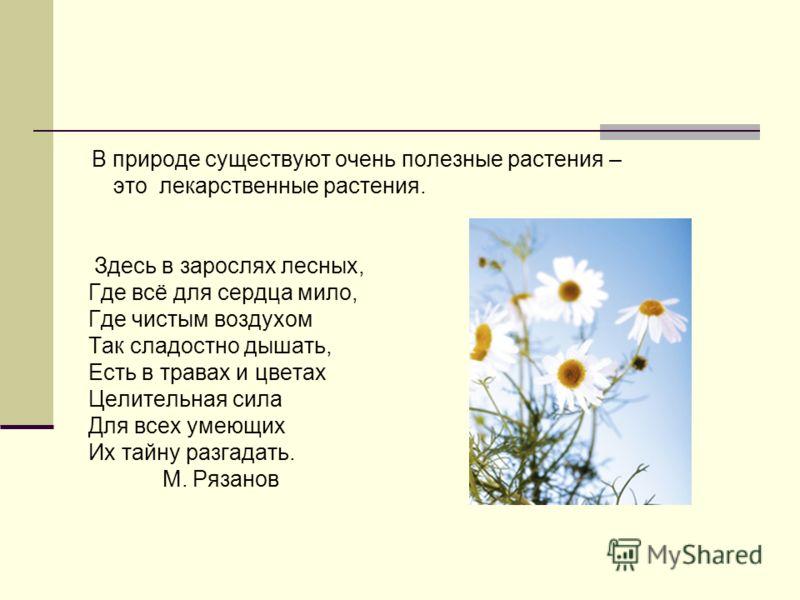 В природе существуют очень полезные растения – это лекарственные растения. Здесь в зарослях лесных, Где всё для сердца мило, Где чистым воздухом Так сладостно дышать, Есть в травах и цветах Целительная сила Для всех умеющих Их тайну разгадать. М. Ряз