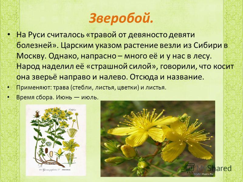 Первобытные народы, осваивая местную флору, находили для себя многие полезные растения, в том числе растения, обладающие целебными или ядовитыми свойствами.