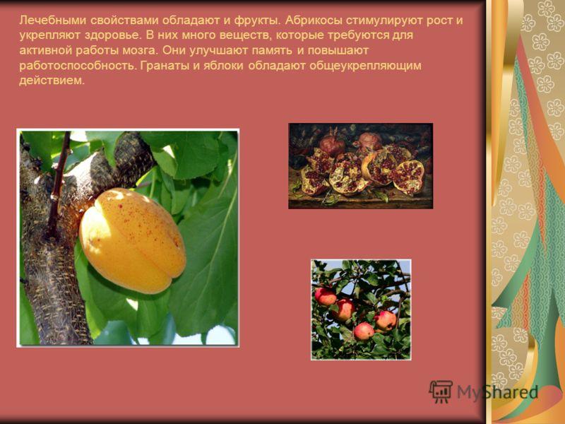 Лечебными свойствами обладают и фрукты. Абрикосы стимулируют рост и укрепляют здоровье. В них много веществ, которые требуются для активной работы мозга. Они улучшают память и повышают работоспособность. Гранаты и яблоки обладают общеукрепляющим дейс