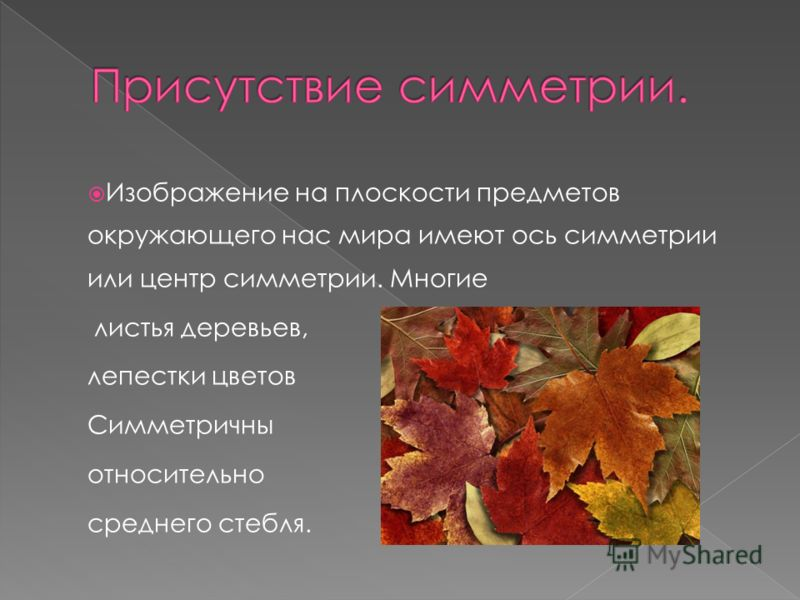 Изображение на плоскости предметов окружающего нас мира имеют ось симметрии или центр симметрии. Многие листья деревьев, лепестки цветов Симметричны относительно среднего стебля.