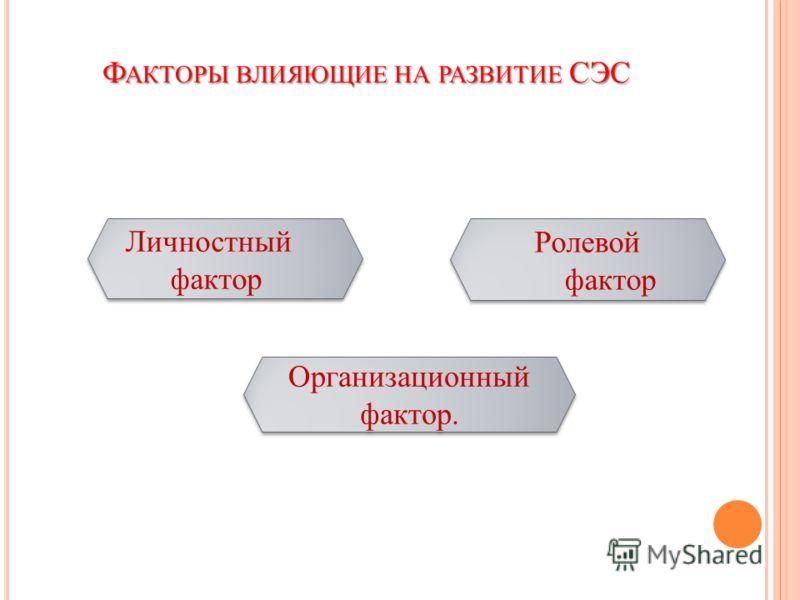 Ф АКТОРЫ ВЛИЯЮЩИЕ НА РАЗВИТИЕ СЭС Личностный фактор Ролевой фактор Организационный фактор.