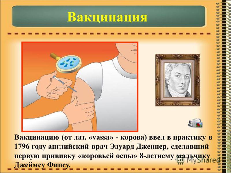 Вакцинация Вакцинацию (от лат. «vassa» - корова) ввел в практику в 1796 году английский врач Эдуард Дженнер, сделавший первую прививку «коровьей оспы» 8-летнему мальчику Джеймсу Фипсу.