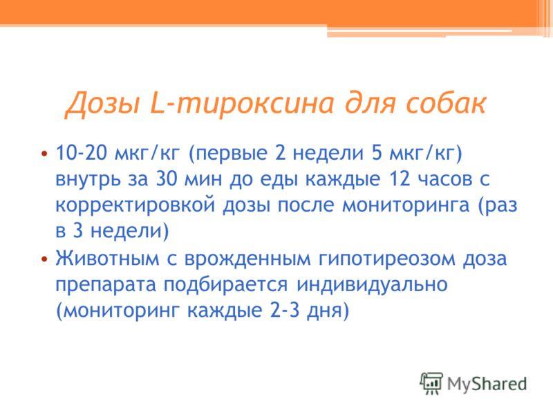 Дозы L-тироксина для собак 10-20 мкг/кг (первые 2 недели 5 мкг/кг) внутрь за 30 мин до еды каждые 12 часов с корректировкой дозы после мониторинга (раз в 3 недели) Животным с врожденным гипотиреозом доза препарата подбирается индивидуально (мониторин
