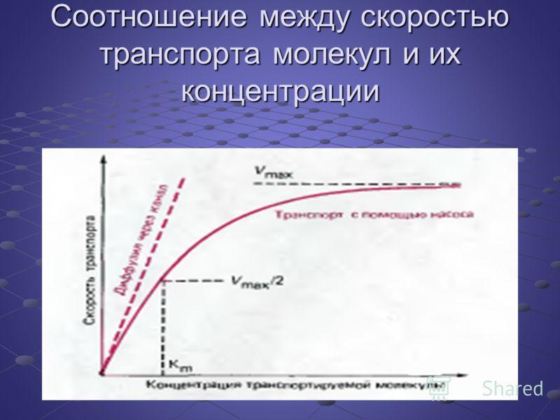 Соотношение между скоростью транспорта молекул и их концентрации