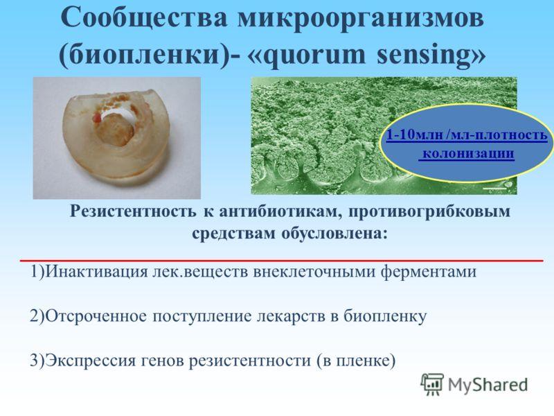 Сообщества микроорганизмов (биопленки)- «quorum sensing» 1-10млн /мл-плотность колонизации Резистентность к антибиотикам, противогрибковым средствам обусловлена: 1)Инактивация лек.веществ внеклеточными ферментами 2)Отсроченное поступление лекарств в
