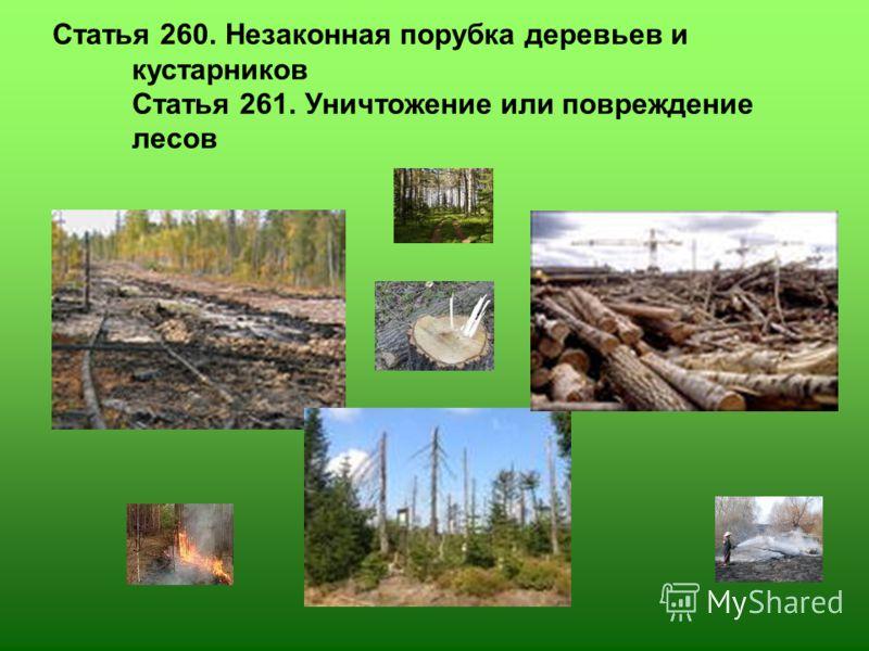 Статья 260. Незаконная порубка деревьев и кустарников Статья 261. Уничтожение или повреждение лесов