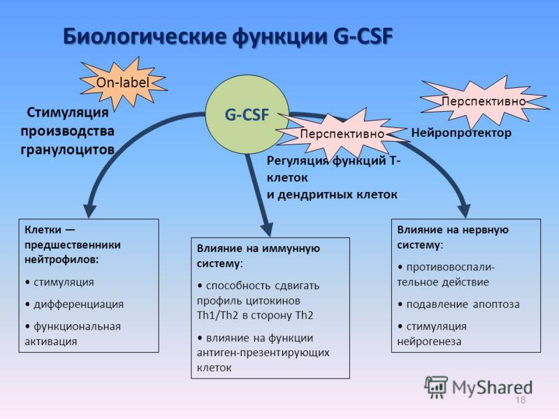 18 G-CSF Биологические функции G-CSF Клетки предшественники нейтрофилов: стимуляция дифференциация функциональная активация Влияние на иммунную систему: способность сдвигать профиль цитокинов Th1/Th2 в сторону Th2 влияние на функции антиген-презентир