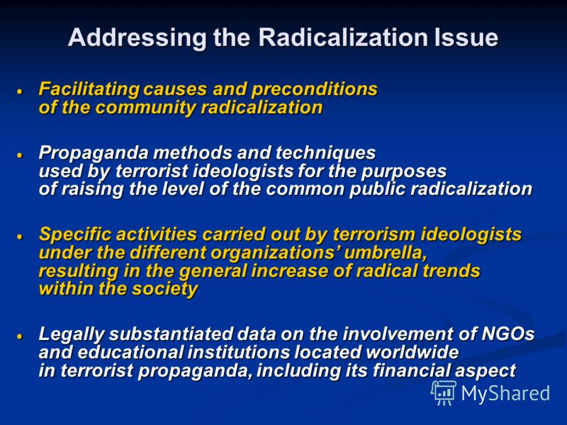 Addressing the Radicalization Issue Facilitating causes and preconditions of the community radicalization Facilitating causes and preconditions of the community radicalization Propaganda methods and techniques used by terrorist ideologists for the pu