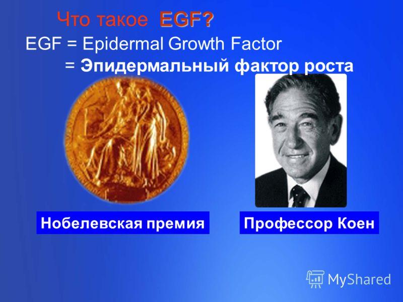 Нобелевская премияПрофессор Коен EGF = Epidermal Growth Factor = Эпидермальный фактор роста EGF? Что такое EGF?