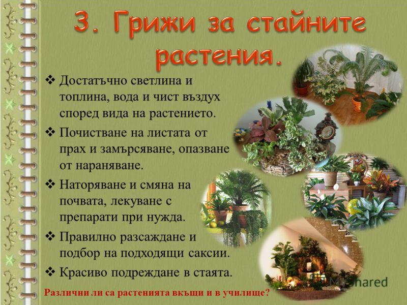 Достатъчно светлина и топлина, вода и чист въздух според вида на растението. Почистване на листата от прах и замърсяване, опазване от нараняване. Наторяване и смяна на почвата, лекуване с препарати при нужда. Правилно разсаждане и подбор на подходящи