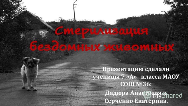 Презентацию сделали ученицы 7 « А » класса МАОУ СОШ 36: Дядюра Анастасия и Серченко Екатерина.