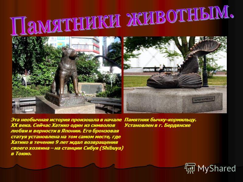 Эта необычная история произошла в начале XX века. Сейчас Хатико один из символов любви и верности в Японии. Его бронзовая статуя установлена на том самом месте, где Хатико в течение 9 лет ждал возвращения своего хозяина – на станции Сибуя (Shibuya) в