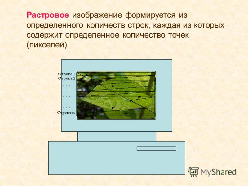 Растровое изображение формируется из определенного количеств строк, каждая из которых содержит определенное количество точек (пикселей)