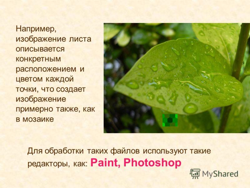 Например, изображение листа описывается конкретным расположением и цветом каждой точки, что создает изображение примерно также, как в мозаике Для обработки таких файлов используют такие редакторы, как: Paint, Photoshop