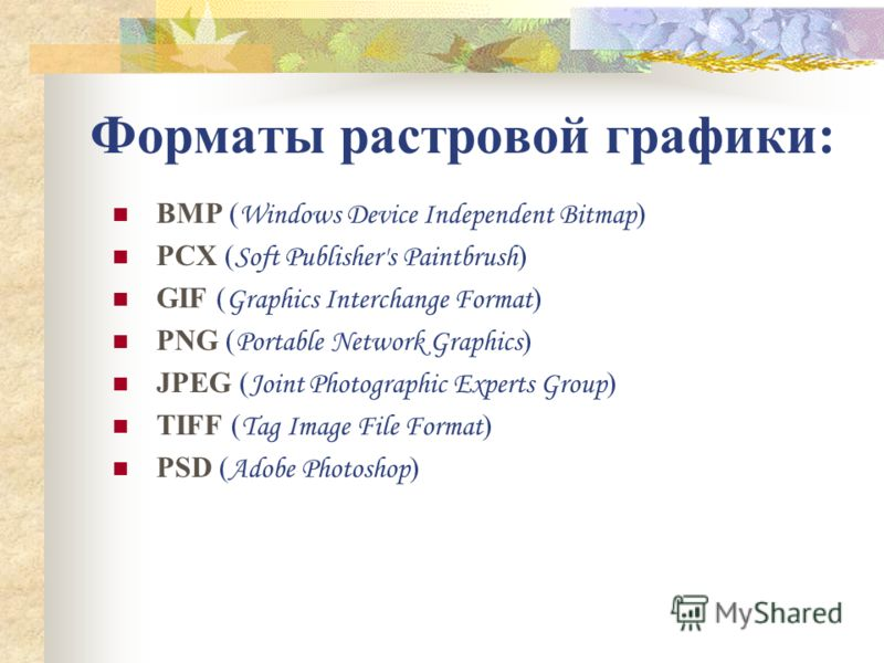 Форматы растровой графики: BMP ( Windows Device Independent Bitmap ) PCX ( Soft Publisher's Paintbrush ) GIF ( Graphics Interchange Format ) PNG ( Portable Network Graphics ) JPEG ( Joint Photographic Experts Group ) TIFF ( Tag Image File Format ) PS