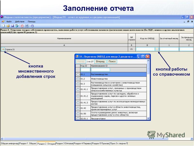 Заполнение отчета кнопка множественного добавления строк кнопка работы со справочником