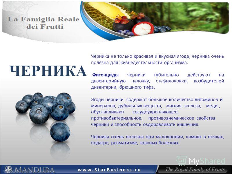 ЧЕРНИКА Черника не только красивая и вкусная ягода, черника очень полезна для жизнедеятельности организма. Фитонциды черники губительно действуют на дизентерийную палочку, стафилококки, возбудителей дизентерии, брюшного тифа. Ягоды черники содержат б