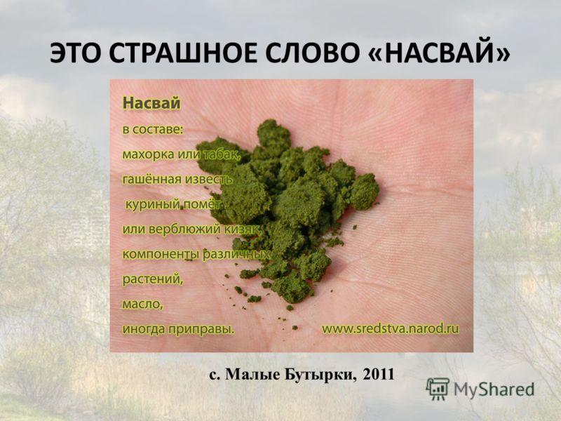 с. Малые Бутырки, 2011 ЭТО СТРАШНОЕ СЛОВО «НАСВАЙ»