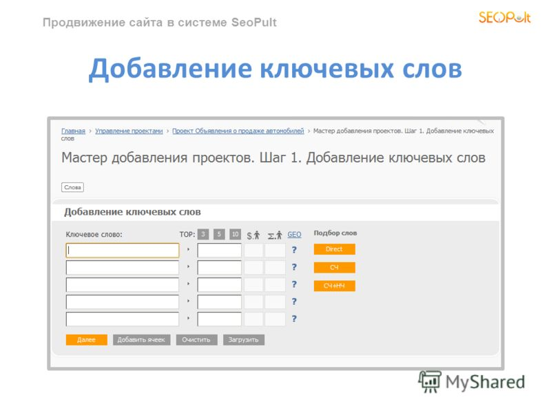 Продвижение сайта в системе SeoPult Добавление ключевых слов