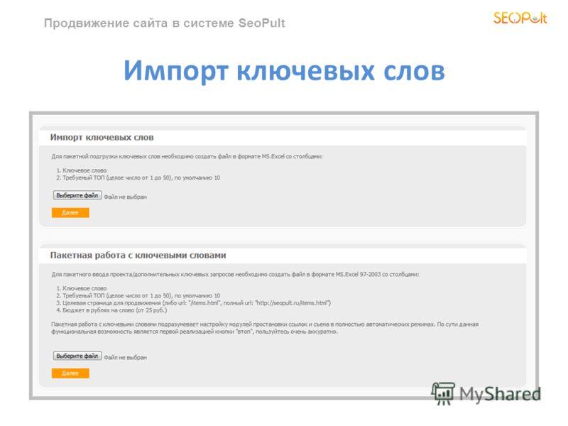 Продвижение сайта в системе SeoPult Импорт ключевых слов