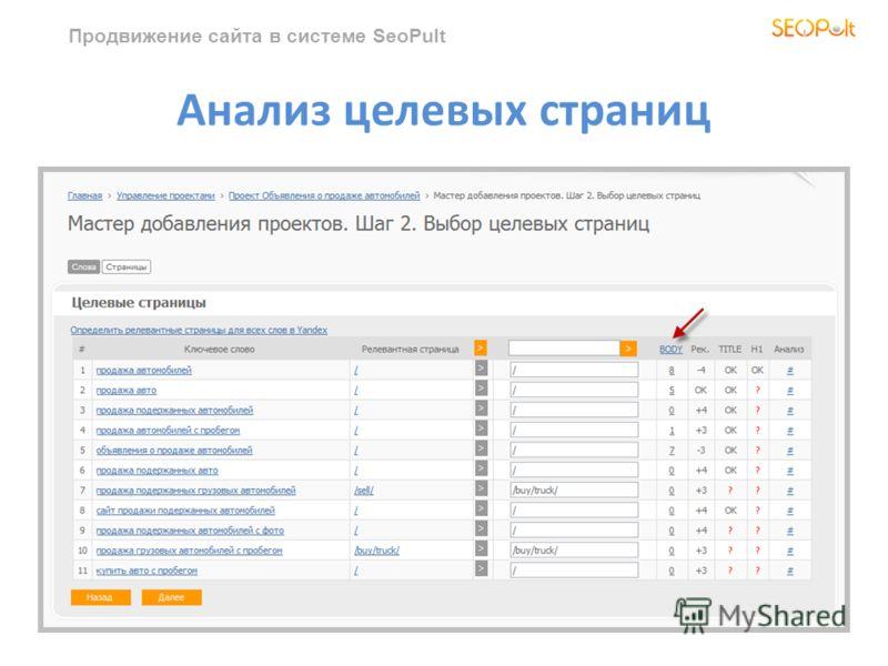 Продвижение сайта в системе SeoPult Анализ целевых страниц