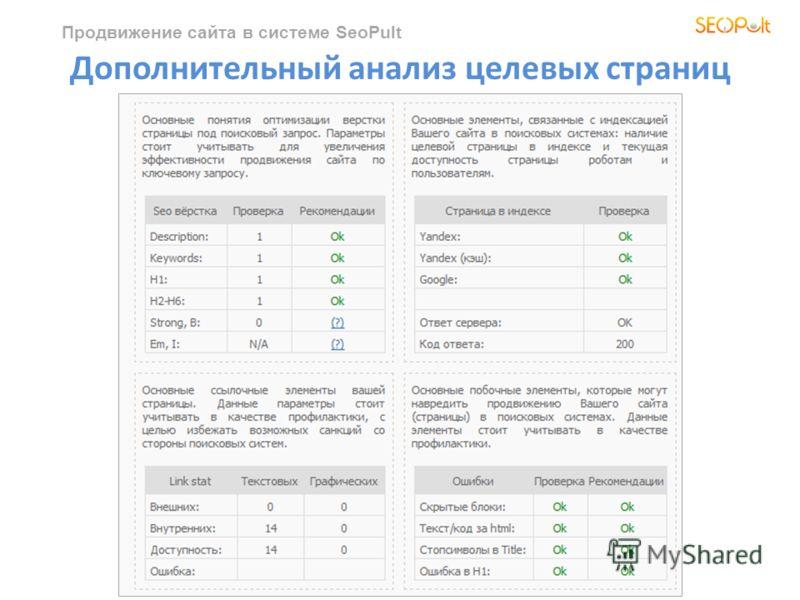 Продвижение сайта в системе SeoPult Дополнительный анализ целевых страниц