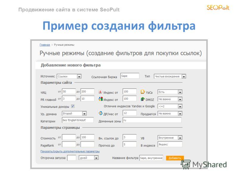 Продвижение сайта в системе SeoPult Пример создания фильтра