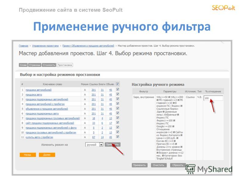 Продвижение сайта в системе SeoPult Применение ручного фильтра