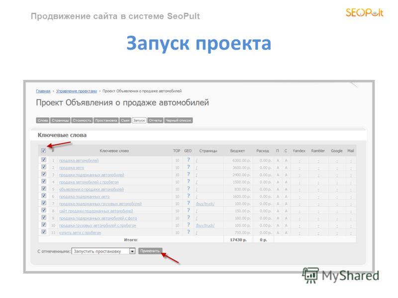 Продвижение сайта в системе SeoPult Запуск проекта