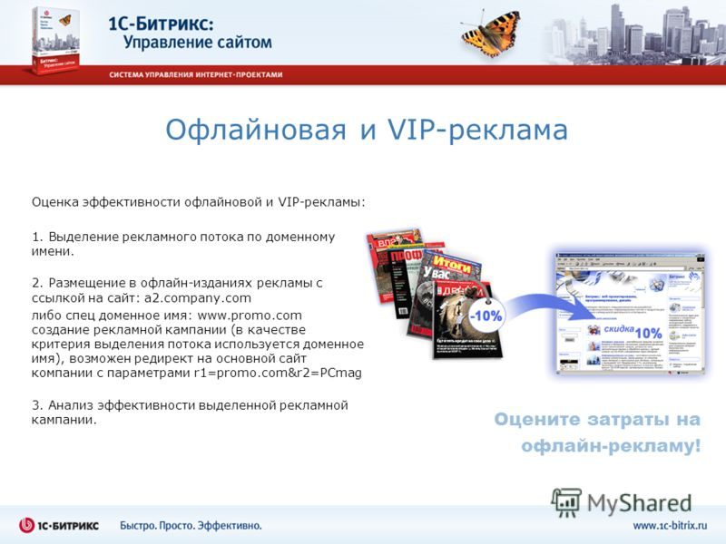 Офлайновая и VIP-реклама Оценка эффективности офлайновой и VIP-рекламы: 1. Выделение рекламного потока по доменному имени. 2. Размещение в офлайн-изданиях рекламы с ссылкой на сайт: a2.company.com либо спец доменное имя: www.promo.com создание реклам