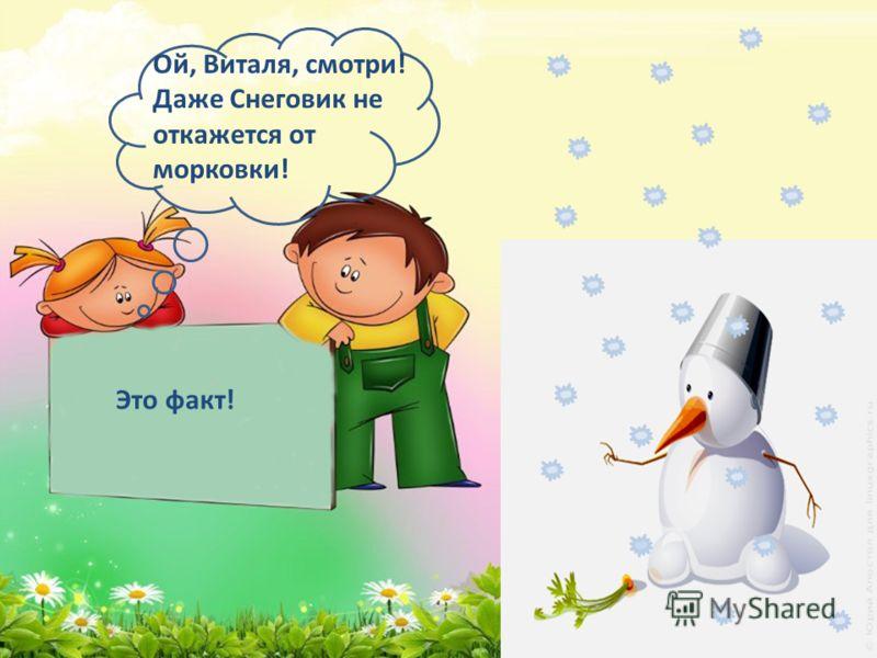 Ой, Виталя, смотри! Даже Снеговик не откажется от морковки! Это факт!