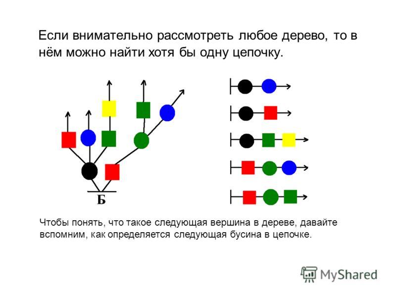 Если внимательно рассмотреть любое дерево, то в нём можно найти хотя бы одну цепочку. Чтобы понять, что такое следующая вершина в дереве, давайте вспомним, как определяется следующая бусина в цепочке.
