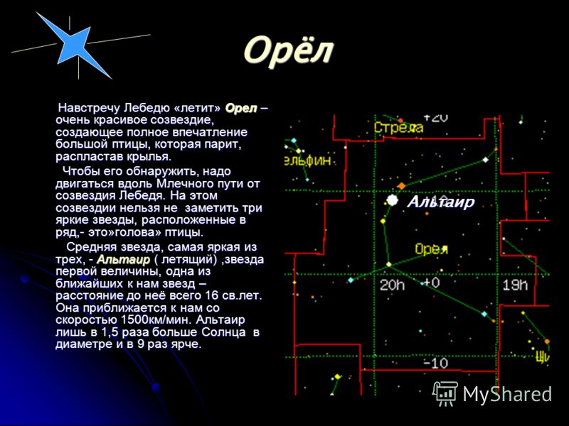 Основные звезды созвездия Основные звезды созвездия Его главная звезда Денеб лишь немногим уступает по блеску Веге, тем не менее расстояние до нее около 600 св.лет. Его главная звезда Денеб лишь немногим уступает по блеску Веге, тем не менее расстоян