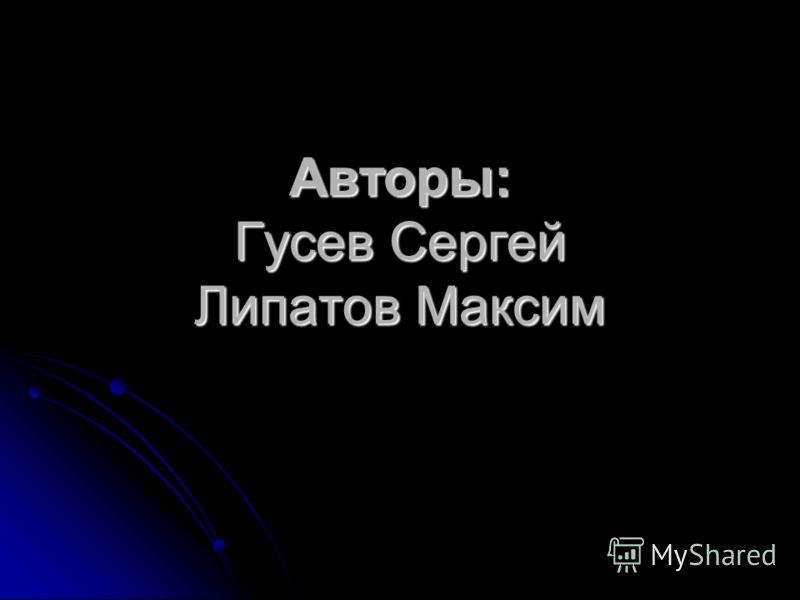 Авторы: Гусев Сергей Липатов Максим