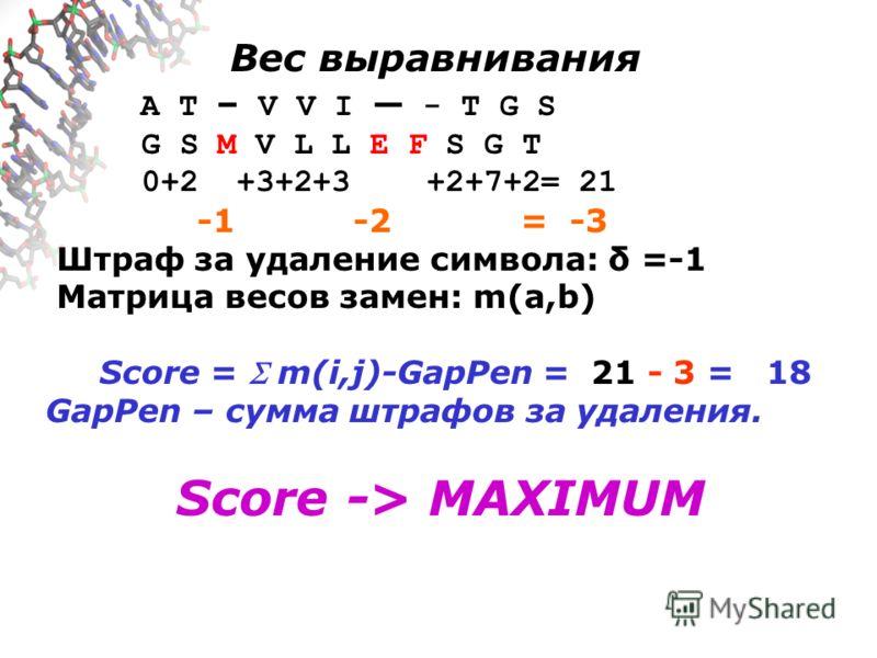 Вес выравнивания A T – V V I - T G S G S M V L L E F S G T 0+2 +3+2+3 +2+7+2= 21 -1 -2 = -3 Штраф за удаление символа: δ =-1 Матрица весов замен: m(a,b) Score = m(i,j)-GapPen = 21 - 3 = 18 GapPen – сумма штрафов за удаления. Score -> MAXIMUM