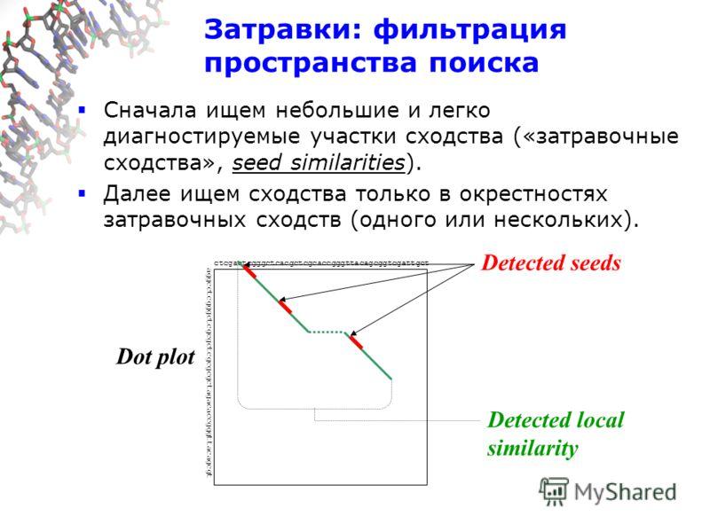 Dot plot ctcgactcgggctcacgctcgcaccgggttacagcggtcgattgct aggcctcgggctcgcgctcgcgcgctagacaccgggttacagcgt Detected local similarity Затравки: фильтрация пространства поиска Сначала ищем небольшие и легко диагностируемые участки сходства («затравочные схо