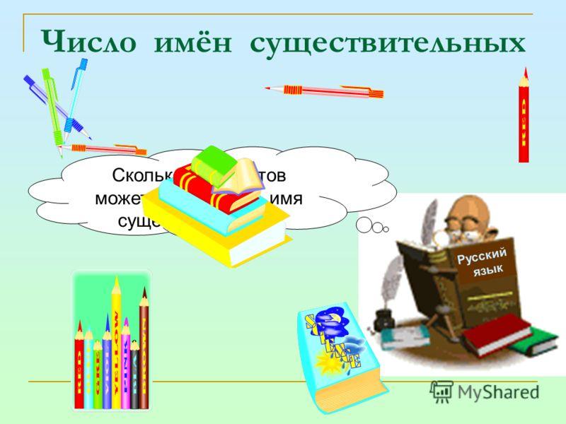 Число имён существительных Русский язык Сколько предметов может обозначать имя существительное?