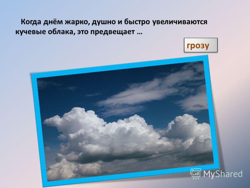 Когда днём жарко, душно и быстро увеличиваются кучевые облака, это предвещает … грозу