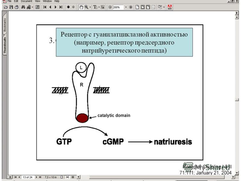 Рецептор с гуанилатциклазной активностью (например, рецептор предсердного натрийуретического пептида)