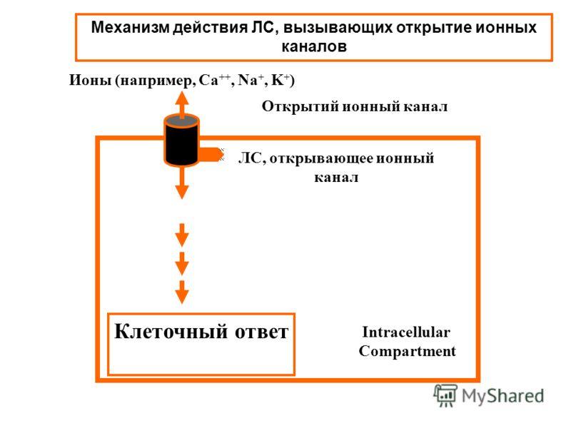 Механизм действия ЛС, вызывающих открытие ионных каналов Открытий ионный канал Intracellular Compartment Ионы (например, Ca ++, Na +, K + ) [Ions] Клеточный ответ ЛС, открывающее ионный канал