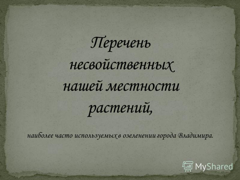 наиболее часто используемых в озеленении города Владимира.