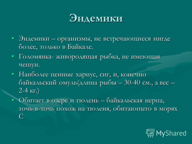 Эндемики Эндемики – организмы, не встречающиеся нигде более, только в Байкале.Эндемики – организмы, не встречающиеся нигде более, только в Байкале. Голомянка- живородящая рыбка, не имеющая чешуи.Голомянка- живородящая рыбка, не имеющая чешуи. Наиболе