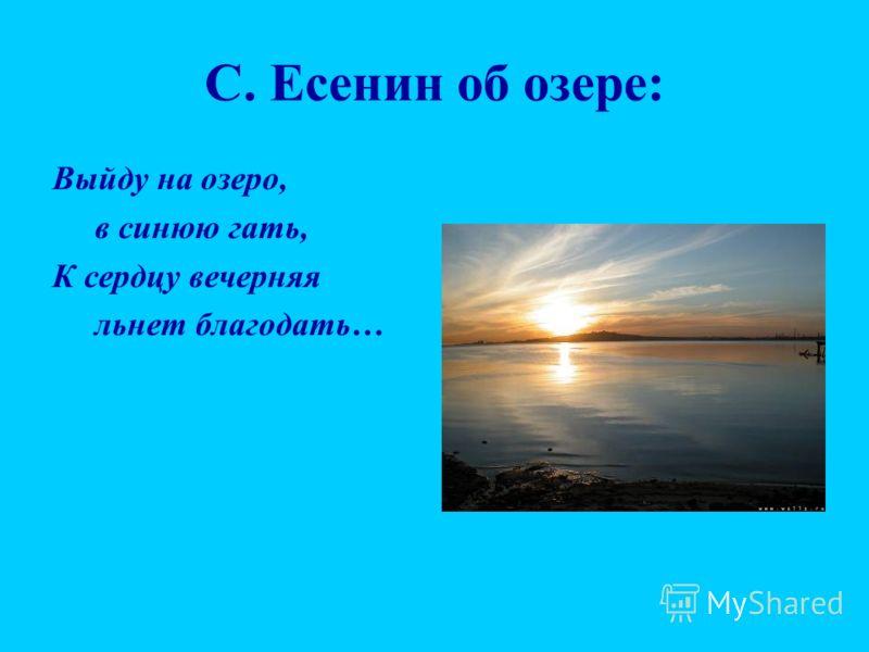 С. Есенин об озере: Выйду на озеро, в синюю гать, К сердцу вечерняя льнет благодать…