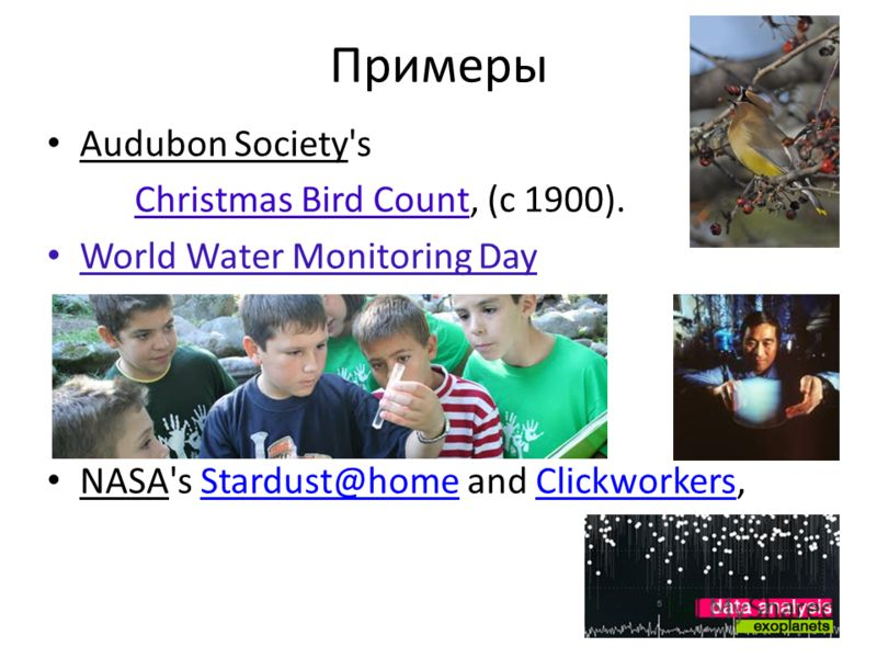 Примеры Audubon Society's Christmas Bird Count, (с 1900). World Water Monitoring Day NASA's Stardust@home and Clickworkers,Stardust@homeClickworkers