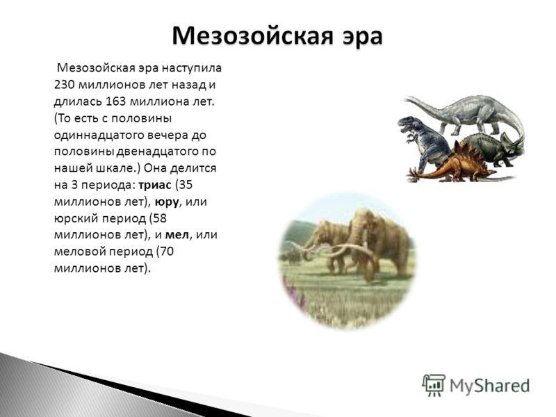 Мезозойская эра наступила 230 миллионов лет назад и длилась 163 миллиона лет. (То есть с половины одиннадцатого вечера до половины двенадцатого по нашей шкале.) Она делится на 3 периода: триас (35 миллионов лет), юру, или юрский период (58 миллионов