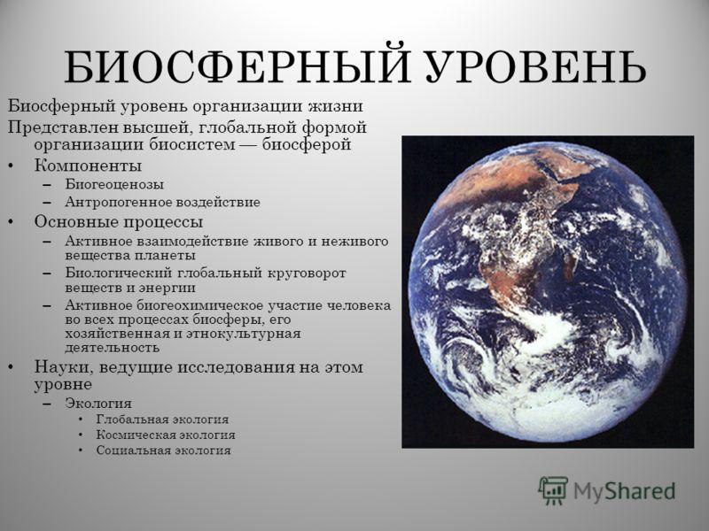 БИОСФЕРНЫЙ УРОВЕНЬ Биосферный уровень организации жизни Представлен высшей, глобальной формой организации биосистем биосферой Компоненты – Биогеоценозы – Антропогенное воздействие Основные процессы – Активное взаимодействие живого и неживого вещества