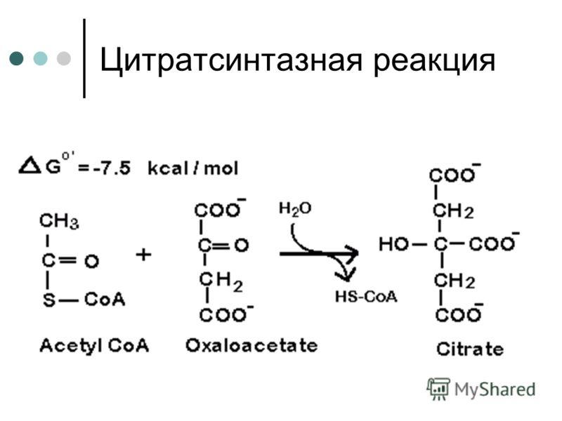 Цитратсинтазная реакция