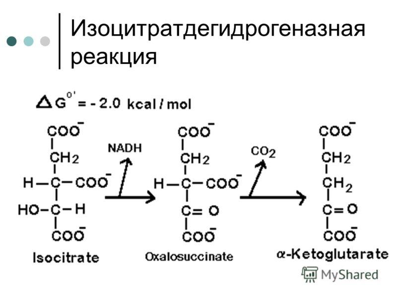 Изоцитратдегидрогеназная реакция